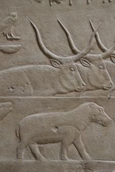 Reliëfs in een mastaba